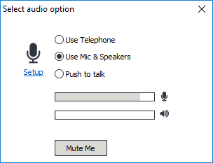 turbomeeting meeting audio options